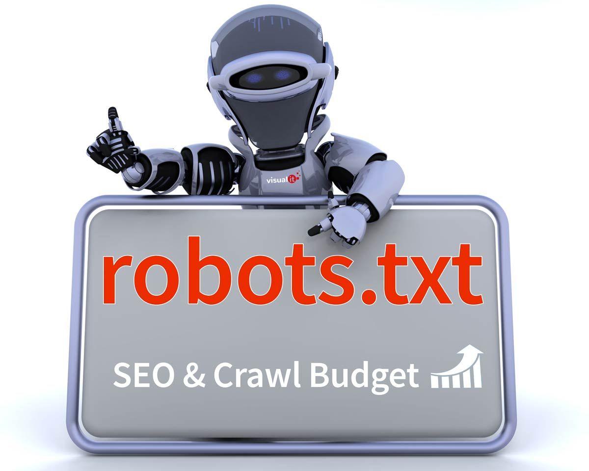 SEO y Crawl Budget con robots.txt
